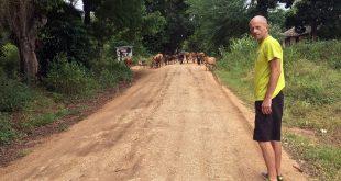 Akutni trčitis u Keniji