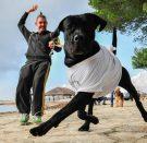 Čupavi mini maraton za Dominikov osmijeh
