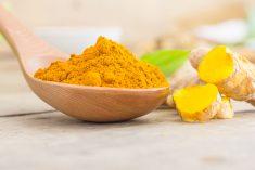 Polifenol iz zlatnog začina
