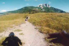 Trčite Ogulin Trail s najboljim (četveronožnim) frendom!