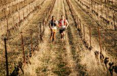 ULTRA GLIDE: Tenisice za trčanje za užitke na većim udaljenostima