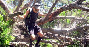 Treking liga: Hvali cestu, drž se šume